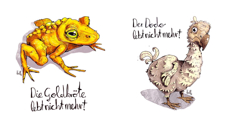 Goldkröte Dodo Tierzeichnung