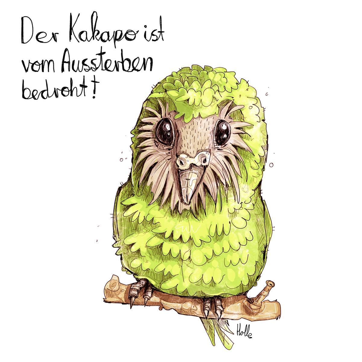 Kakapo vom Aussterben bedroht Umwelt Zeichnung