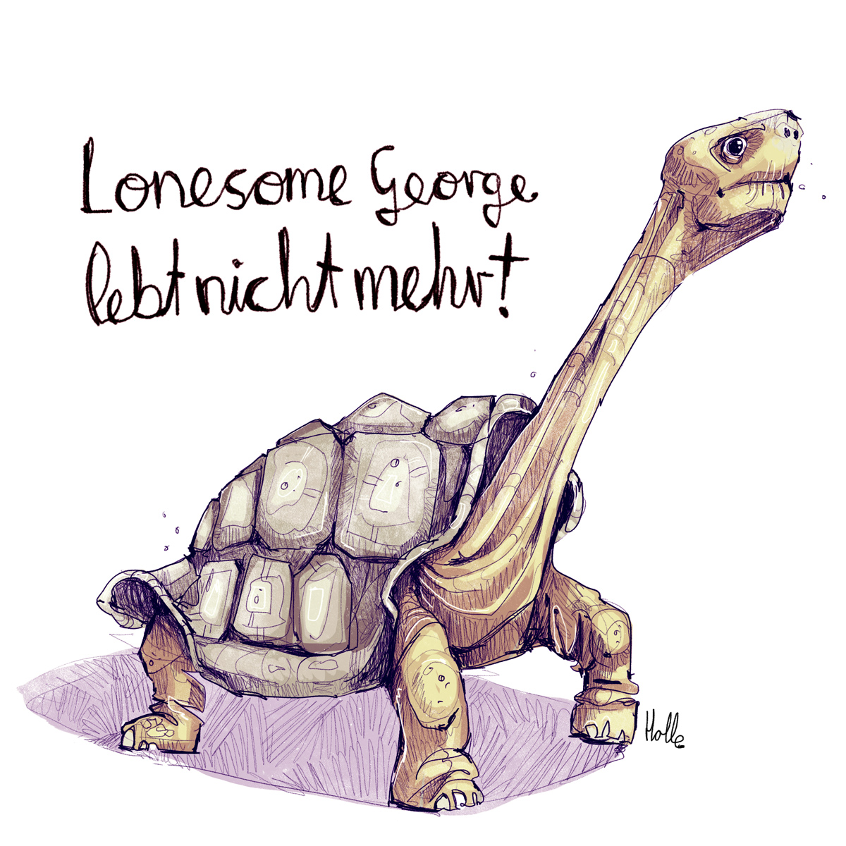 Lonesome George Tierzeichnung Editorial Illustration