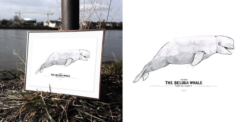 derholle-news-spreadshirt-poster-bonn-beluga