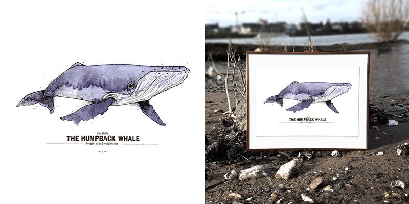 derholle-news-spreadshirt-poster-bonn-buckelwal