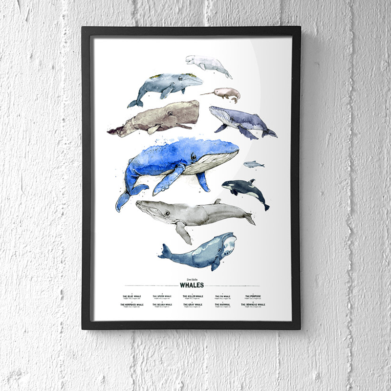 derholle-wal-walposter-bonn-illustrator-spreadshirt-poster-aquarell