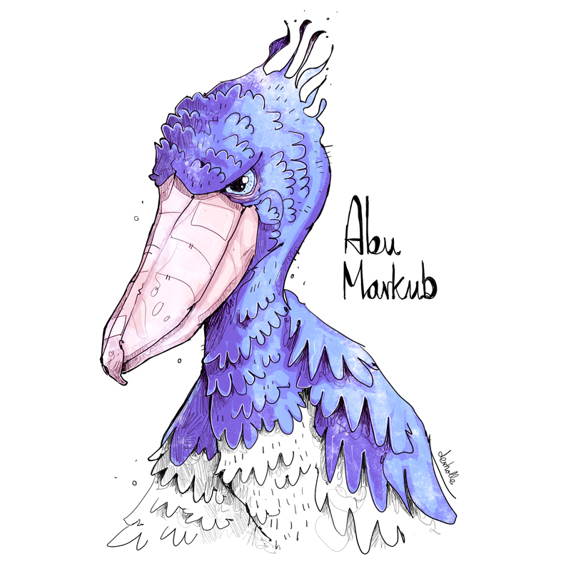 derholle.de-matthias-hollaender-illustrator-bonn-schuhschnalbel-abu-markub