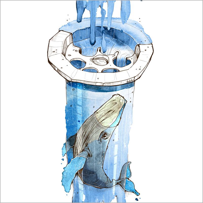 Mikroplastik Wal Abfluss Umwelt microplastic Fraunhofer Illustration Zeichnung