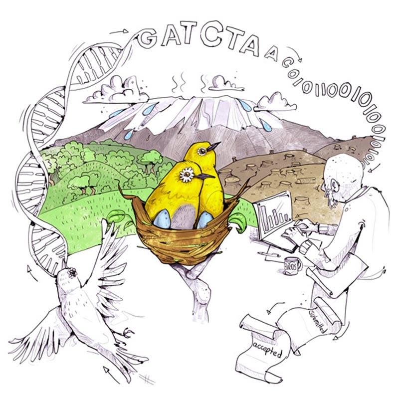 Illustrator Bonn Wissenschaftsillustration